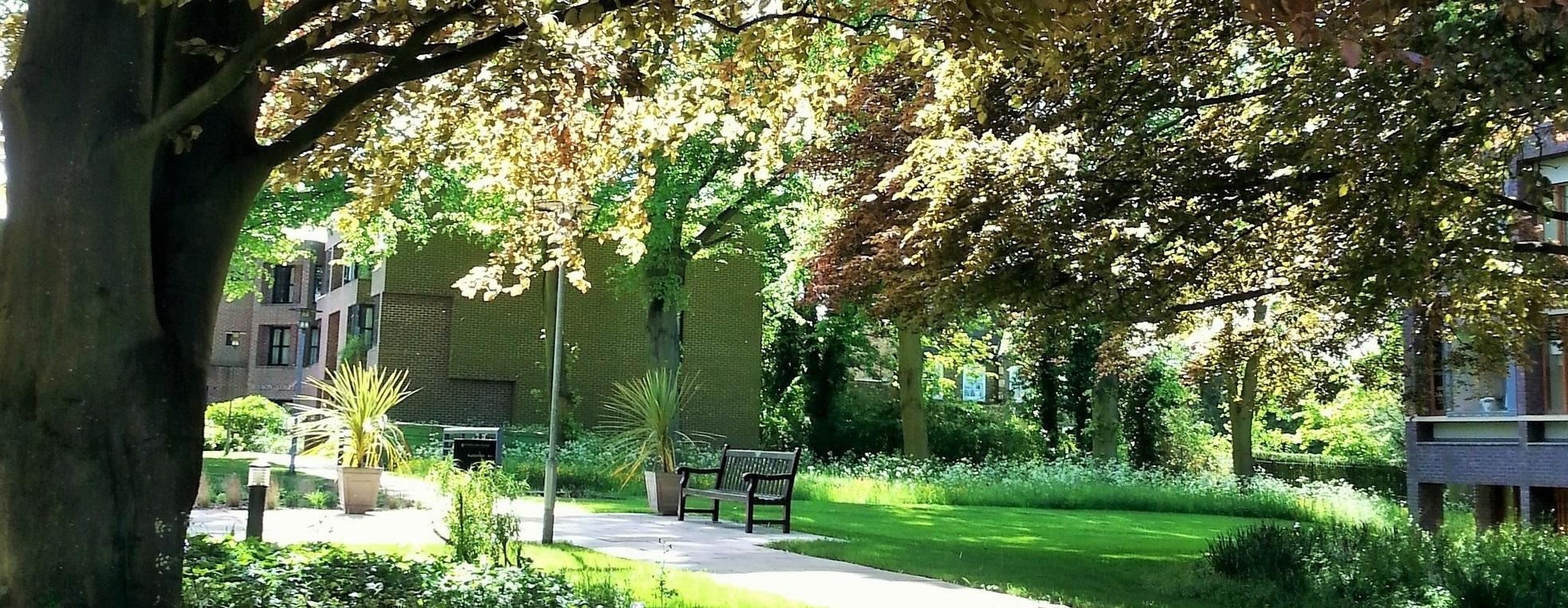 Gardens at Fitzwilliam