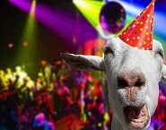 MCR Party - Goat